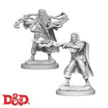 D&D Nolzur's Marvelous Miniatures: Human Sorcerer Male