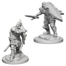 D&D Nolzur's Marvelous Miniatures: Human Paladin Male