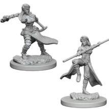 D&D Nolzur's Marvelous Miniatures: Human Monk Female Wave1