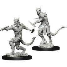 D&D Nolzur's Marvelous Miniatures: Tiefling Rogue Male