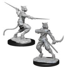 D&D Nolzur's Marvelous Miniatures: Tabaxi Rogue Male