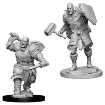 D&D Nolzur's Marvelous Miniatures: Goliath Fighter Male