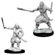 D&D Nolzur's Marvelous Miniatures: Bandits