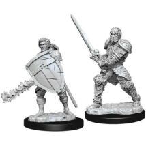 D&D Nolzur's Marvelous Miniatures: Human Fighter Male
