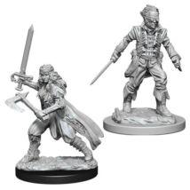D&D Nolzur's Marvelous Miniatures: Vampire Hunter
