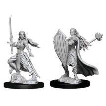 D&D Nolzur's Marvelous Miniatures: Elf Paladin Female