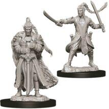 D&D Nolzur's Marvelous Miniatures: Elf Paladin Male