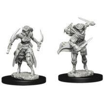 D&D Nolzur's Marvelous Miniatures: Tiefling Rogue Female