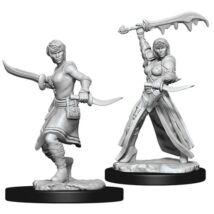 D&D Nolzur's Marvelous Miniatures: Human Rogue Female