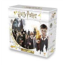 Harry Potter, Egy tanév Roxfortban