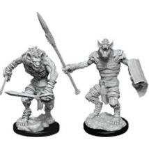 D&D Nolzur's Marvelous Miniatures: Gnoll & Flesh Gnawer