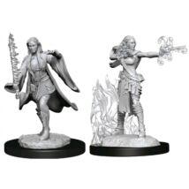 D&D Nolzur's Marvelous Miniatures: Multiclass Warlock/Sorcerer