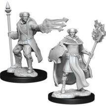 D&D Nolzur's Marvelous Miniatures: Multiclass Cleric/Wizard