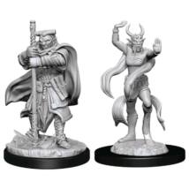 D&D Nolzur's Marvelous Miniatures: Hobgoblin Devastator & Iron Shadow