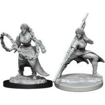 D&D Nolzur's Marvelous Miniatures: Human Monk Female Wave 14