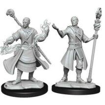 D&D Nolzur's Marvelous Miniatures: Half-Elf Wizard Male Wave 14