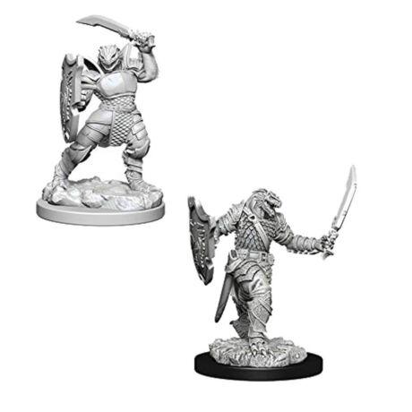 D&D Nolzur's Marvelous Miniatures: Dragonborn Paladin Female