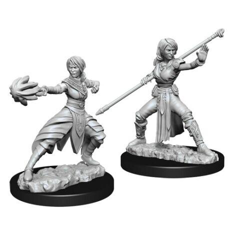 D&D Nolzur's Marvelous Miniatures: Half-elf Monk Female